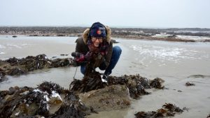 Algues marines: une solution pour lutter contre la pollution au plastique?