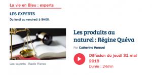 France Bleu Breiz Izel, les Experts 31 mai 2018