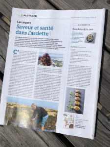 Les Côtes d'Armor : un grand champ d'algues