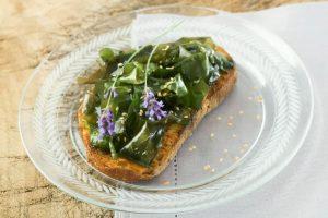 La cuisine aux algues : c'est une bonne chose !